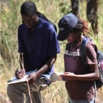 Chinhoyi University Fieldworks 2013/4