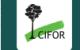 CIFOR logo